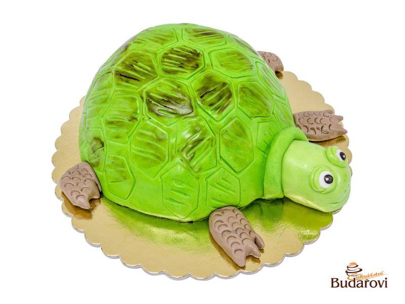 537 - Želva