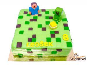579 - Minecraft