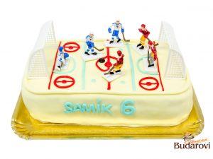 636 - Hokejové hřiště