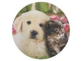 Jedlý oplatek 3 kočka a pes - 20 cm