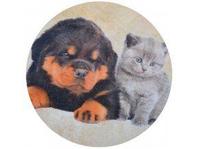 Jedlý oplatek 4 Kočka a pes  - 20 cm